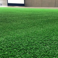 Evolution Turf Sled Track
